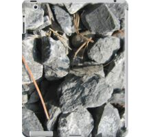 Rock Camo iPad Case/Skin