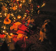 Rascal and the Charlie Brown Christmas Tree by Marriet