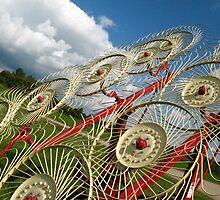 Twirling towards the sky by Liesl Gaesser
