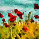 The Poppy Field by DiNovici