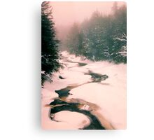 Winter Snowy Water Scene Metal Print