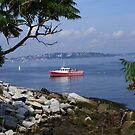Casco Bay with Portland, Maine Skyline by MaryinMaine