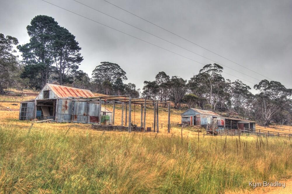 Country Living  NSW  by Kym Bradley