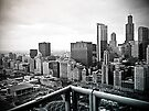 A View of Chicago by kalikristine