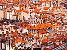 Lyon, France by kalikristine