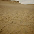 The Dunes by colinrac