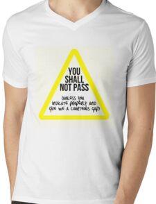 You Shall Not Pass... unless Mens V-Neck T-Shirt
