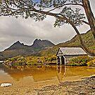Boatshed Beach, Dove Lake, Cradle Mountain by TonyCrehan