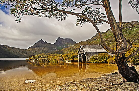 Boatshed Beach, Dove Lake, Cradle Mountain by TonyCrehan