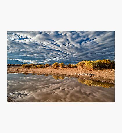 Mud Puddle Photographic Print