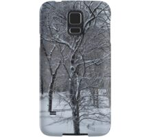 A Walk In The Snow Samsung Galaxy Case/Skin