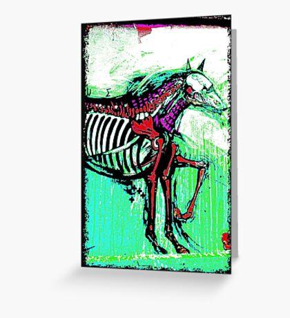 Melbourne Graffiti Street Art Horse Greeting Card