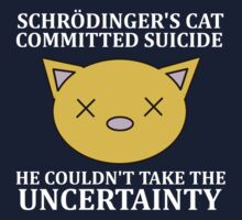 Schrodinger's cat by DonTran