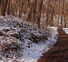 Winter Hike by Sandy Woolard
