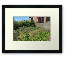 Kitchen Garden Framed Print