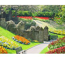 Guildford Palace in England Photographic Print