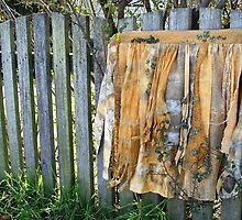 apron for a driad by Rita Summers