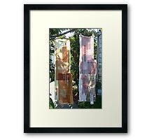 cinderella's wardrobe Framed Print