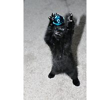 Kitten Monster Photographic Print