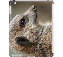 Ipad case - meecat 2 iPad Case/Skin