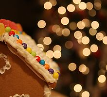 Gingerbread House by EFPhotography