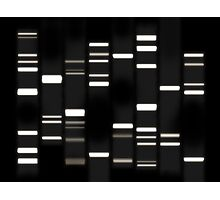 DNA Art White on Black Photographic Print