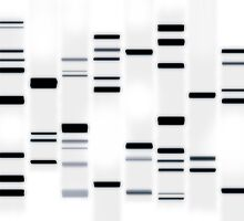 DNA Art Black on White by Michael Tompsett