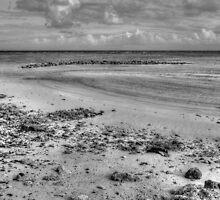 Yamacraw Beach in Nassau, The Bahamas (Black & White) by Jeremy Lavender Photography