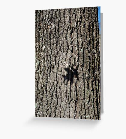 Oak Shadow Greeting Card