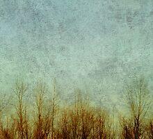 Brush Fire by Rebecca Cozart