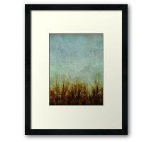 Brush Fire Framed Print