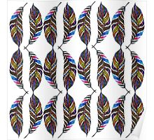Colorful Hand Drawn Pattern Feathers Poster