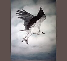 White-bellied Sea-Eagle (Haliaeetus leucogaster) 2 T-Shirt