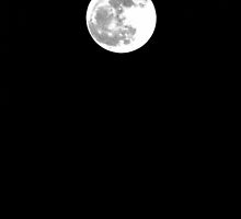 Full Moon - December 28th, 2012 by © Sophie W. Smith