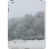 The softness of snowflakes iPad Case/Skin