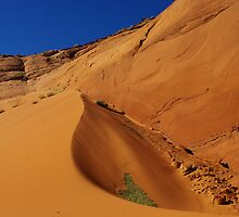 Dune near Peek-A-Boo Slot Canyon, Utah by Claudio Del Luongo