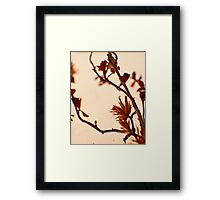 Spikey Pink -Fall Foliage Series Framed Print