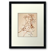 Tiny Buds -Fall Foliage Series Framed Print