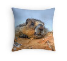 Say Cheeeese! Throw Pillow
