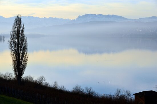 Lake Hallwyl, Switzerland, by Daidalos