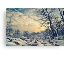 Winter Landscape Canvas Print