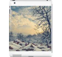 Winter Landscape iPad Case/Skin