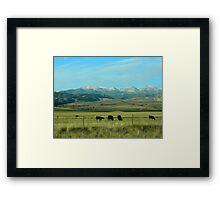 Beautiful Montana Framed Print