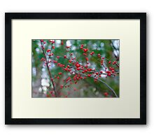 Red Spheres of Nature Framed Print