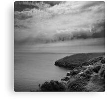 Close to the Edge - photograph Canvas Print