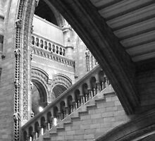 Natural History Museum, London by Karen Hood