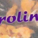 Featured - Beautiful Carolinas by Jay Gross