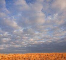 Nebraska Prairie & Sky by Adrian Olivera