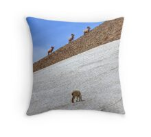 Cruising Rams Throw Pillow