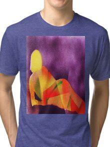 Sunlight on a reclining nude Tri-blend T-Shirt